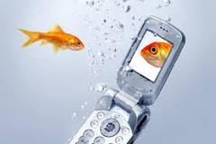Photo of چگونه گوشی یا تبلت خیس شده را نجات دهیم !